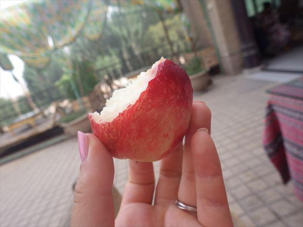 果物もらった!! (2)_R