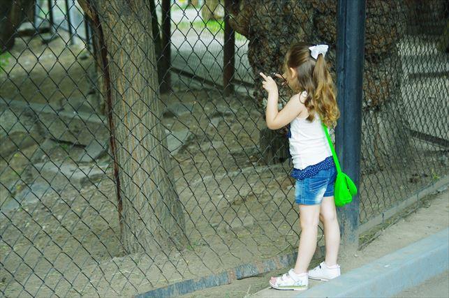 アルマトイの動物園 (75)_R