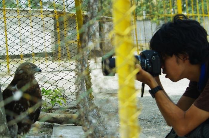 ドゥシャンベ動物園 (23)_R