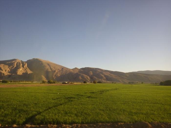 バスからの朝の景色 (1)