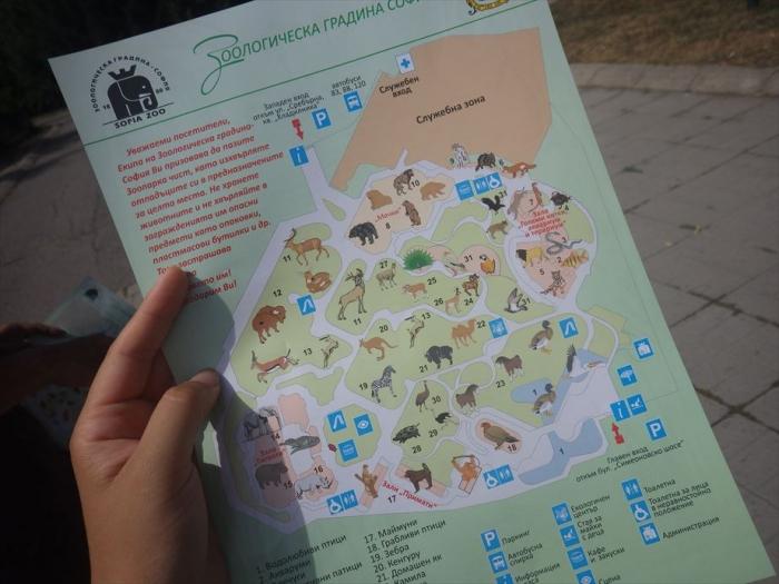 ソフィア動物園 (135)