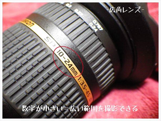 RIMG0979_R.jpg